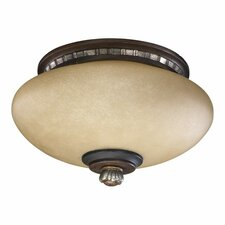 Ashfield 2 Light Ceiling Fan Light Kit
