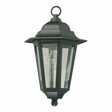 1 Light Hanging Lantern