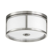 Omega 3 Light Flush Mount