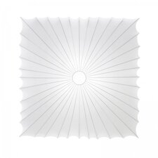 Muse 1 Light Wall and Ceiling Fixture