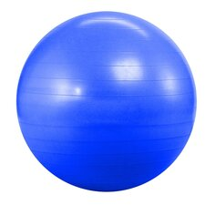 Anti Burst and Slow Leak Deluxe Ball