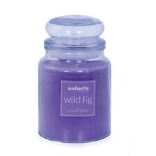 Wild Fig Jar Candle