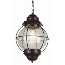 <strong>TransGlobe Lighting</strong> Outdoor Onion 1 Light Hanging Lantern