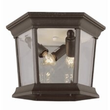 Outdoor 3 Light Flush Mount