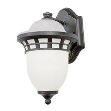 Outdoor 1 Light Wall Lantern