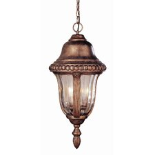 Outdoor 4 Light Hanging Lantern