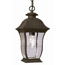 <strong>TransGlobe Lighting</strong> Outdoor 2 Light Hanging Lantern