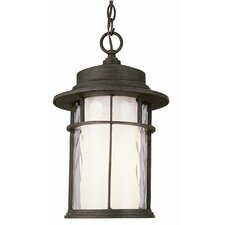 Exterior 1 Light Hanging Lantern with Double Glass