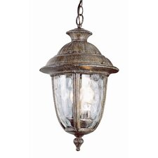 <strong>TransGlobe Lighting</strong> Exterior Hanging Lantern