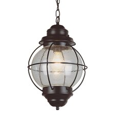 <strong>TransGlobe Lighting</strong> 1 Light Outdoor Hanging Lantern