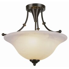 Contemporary Semi Flush Mount
