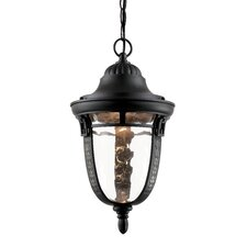 Braided Roman 1 Light Outdoor Hanging Lantern