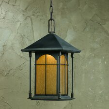 <strong>Triarch Lighting</strong> 1 Light Outdoor Pendant