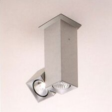 Dau Spot Two Light Flush Mount with Rotating Spot Light
