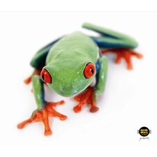CleanScreen Cloth - Tree Frog