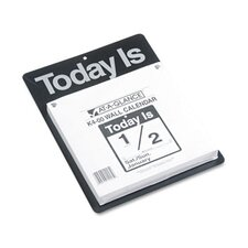 Today Is Daily Wall Calendar, 9-3/8 x 12, 2013