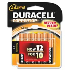 AAA-Cell Coppertop Alkaline Batteries (Set of 2)