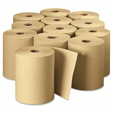 Envision Hardwound Paper Towel - 12 Rolls