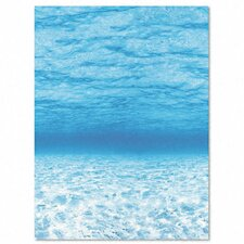 "Fadeless Designs 4' x 4' 2"" Bulletin Board Paper"