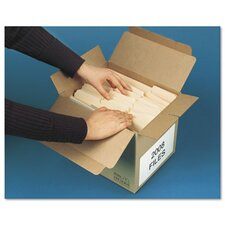 Double Window Security Tinted Check Envelope, 1000/Box
