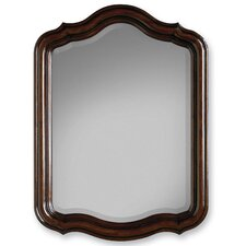 <strong>Cole & Company</strong> Premier Collection Calais Wall Mirror