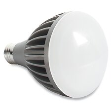 85W Warm White LED Lamp Bulb