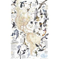 Bird Migration, Western Hemisphere Wall Map