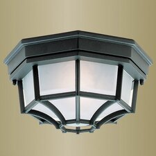 <strong>Livex Lighting</strong> Outdoor Basics Flush Mount