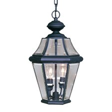 Georgetown  Outdoor Hanging Lantern in Black