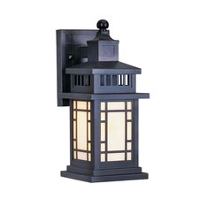 Mirror Lake Outdoor Wall Lantern