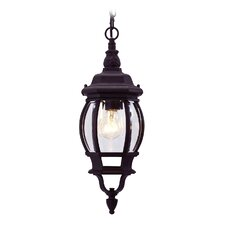 Frontenac 1 Light Outdoor Hanging Lantern