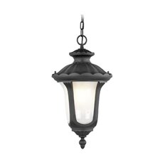 <strong>Livex Lighting</strong> Oxford 1 Light Outdoor Hanging Lantern