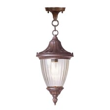 Townsend 1 Light Outdoor Hanging Lantern
