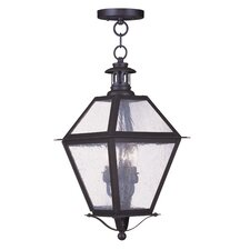 Waldwick 3 Light Outdoor Hanging Lantern