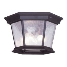 Hamilton Outdoor Flush Mount