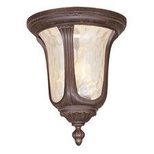 <strong>Livex Lighting</strong> Oxford Outdoor Flush Mount