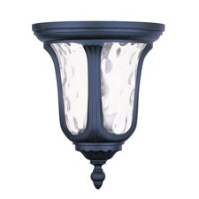 Oxford 2 Light Flush Mount