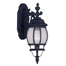 Frontenac 1 Light Outdoor Wall Lantern