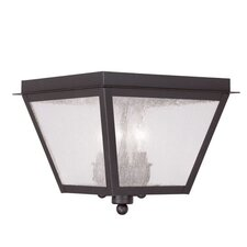 Amwell 3 Light Outdoor Flush Mount