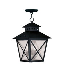 Montgomery 3 Light Outdoor Hanging Lantern