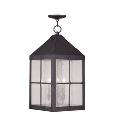 Brighton 4 Light Outdoor Hanging Lantern