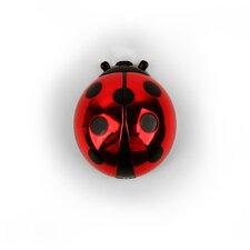 Ladybug Lip Gloss