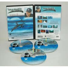WYLAND ART STUDIO DVD 13 EPISODES SERIES 2