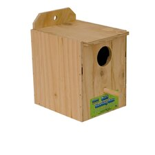 Parakeet Nest Bird House