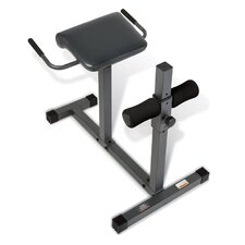 <strong>Apex</strong> Marcy Extension Flat Hyperextension Bench Chair