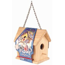 Paint-A-Bird House