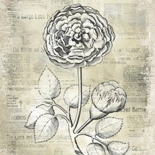 Antiqued Bloom I Canvas Wall Art