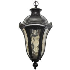 Straford 1 Light Outdoor Hanging Lantern