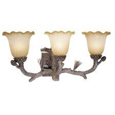 Aspen 3 Light Vanity Light