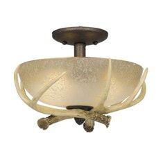 Lodge Two Light Ceiling Fan Light Kit
